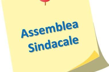 Assemblee Sindacali del 25.01 e del 15.02.2021